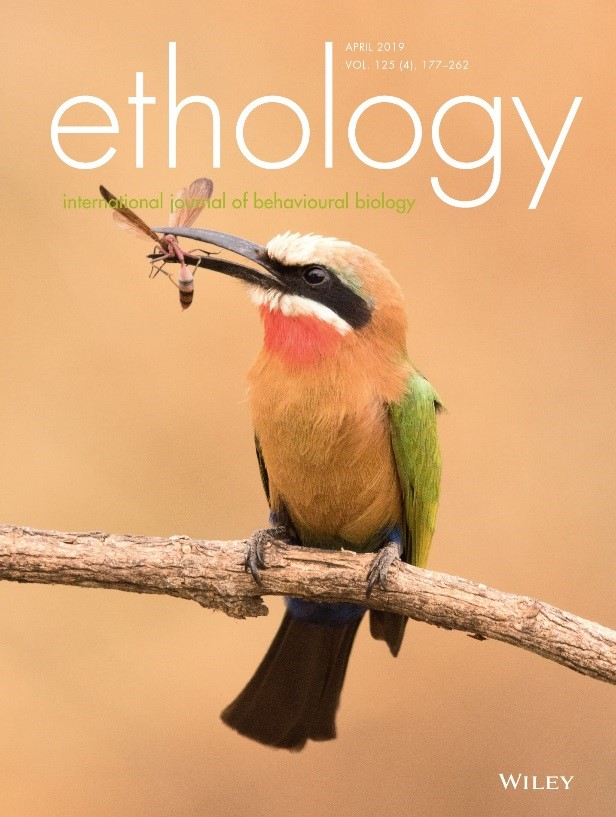 Ethology page – cover page of the Ethology April 2019 issue, depicting a bee-eater feeding on an insect