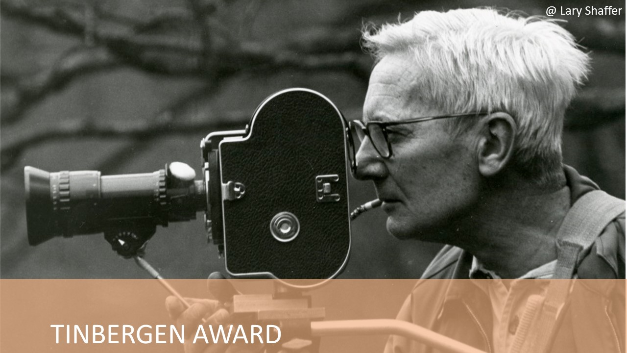 Tinbergen Award page – Nico Tinbergen smoking a cigarette while videorecording